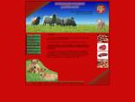 Κρεοπωλείο Χρήστος Γεμιστός - Ποιότητα στο κρέας