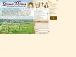 GeneaMinas - genealogia mineira