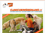 Associazione Gentle Team | Corsi di Educazione e Addestramento del cane | Clicker Training | Cent