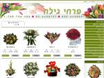 משלוחי פרחים בירושלים | פרחים בירושלים | פרחי גילה