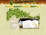 Studio grafico Grafica pubblicitaria Grafica web Grafica N6