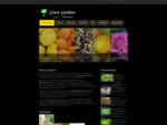 Green Gardens Πάγκαλος olive trees έργα πρασίνου