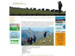 Associazione Escursionistica Peloritana | The Greenstone