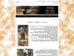 הכלביה כפר רות - פנסיון לכלבים וחתולים