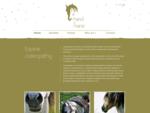 osteopathie paard | hand to mane, paardendokter, paardenfluisteraar, horsemanship, osteopathie