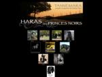 Le Cheval Minorquin - Cheval Pure Race Minorquin - Tannemara - Haras des Princes Noirs - Specialiste