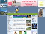 hestemarked. no [ Hest Ponni Hesteutstyr Rubrikk annonser Kjøp Salg Stall Debatt Kurs