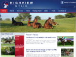 Waikato's Quality Thoroughbred Farm - Highview Stud