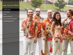 Кавер группа HITOBILLY | Живая музыка драйвового свойства и солнечного настроения