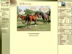Paard Natuurlijk