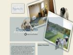 Doggyday Inn - Lichtaart