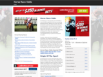 Horse Race Odds | Horse Racing Form Guide and Betting Odds