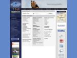 Horsetransfer - Zoeken