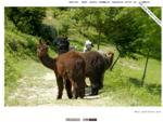 Ruggero Barsacchi s photoblog