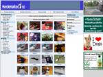 hundemarked. no - Norges Største Hundemarked! [ Hund Hundeutstyr Rubrikk annonser Kjøp Salg