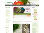Kvetináče, črepníky, rastliny, rezané kvety, umelé kvety | Hydroflora