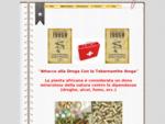 TABERNANTHE IBOGA - La droga contro le droghe che spaventa le case farmaceutiche!