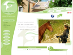 IGE - International Gosto Equino Criador Cavalo Lusitano