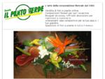 Fioreria Il Punto Verde. Fioreria online. Fiori e piante. Spedizioni floreali. La fioreria di ...