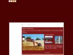 Apollo Costruzioni - Impresa edile - Netro - Biella - Visual Site