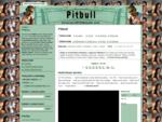Pitbull - 157 písniček - Hotel Room Service, Crazy, Oye, Ay Chico, I Know You Want Me, Go Girl,