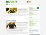 Animali domestici cani, gatti e curiosità sugli animali