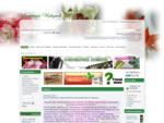 Цветочный Иркутск - Форум любителей комнатных растений Иркутска и области