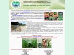 Irrigazione giardini a Pisa, irrigazione giardini a Lucca, irrigazione giardini a Livorno, ...