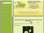 JABONES ARTESANALES - JABONES DECORATIVOS - JABONES PARA AROMATERAPIA - CURSOS Y TALLERES - INSUMOS
