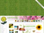 Jardicentro - Construção de Exteriores, lda. - Concepção, Construção e Manutenção de Jardins, Pi