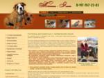 Гостиница для животных, передержка собак, кошек в Уфе - Жестин Элит