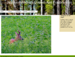 Jagd und Wildschutzverein des Amtes Fraubrunnen