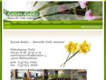 Kaisan Kukka - Etusivu