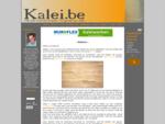Kalei. be - Alle info rond het kaleien van gevels op 1 site!
