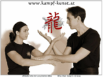 wing chun - Qi Gong - Wu Shu - Kampfkunst - Kampfsport - kung fu - Wien - Selbstverteidigung - Zentr