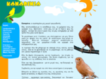 All about Καναρίνια, Kanarinia. Canary, Canaries, our beloved pets.