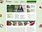 Салон цветов Флорист. ру в Казани, заказ букетов через Интернет