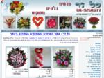פרחים, בלונים, זרי פרחים, זרי בלונים, זרים מתוקים, משלוחי זרים , חנות פרחים באינטרנט, כל זר,