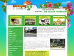 Αποστολή λουλουδιών, Φυτώριο, Ανθοπωλείο Γλυκά νερά , Κωτσάκη