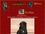 FRENCH BULLDOG GREAT DANE -Hodowla Król Arlekin - Dogi Niemieckie i Buldożki Francuskie