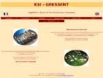 KSI-GRESSENT - Vegetation, decors et fournitures pour maquettes d'architecture