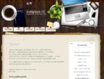 Raamatupidamisteenused - Kuldpliiats OÜ   - Teenused