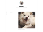 Kupo! - The American Eskimo