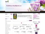 Hlavní stránka | Kvetiny-chudejova. cz - orchideje, osiva zeleniny a květin
