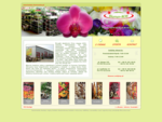 Kwiaty-Hurtownia - Blumen-NOB - Szczecin, hurtownia kwiatów