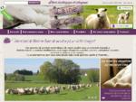 Fabrication artisanale de futons, couettes, matelas de laine   LAINE COMPAGNIE
