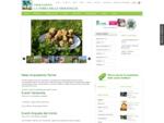 Home-La Terra delle Meraviglie - Agriturismi, BedBreakfast, Hotel, Campeggi, Residences | Marche ...