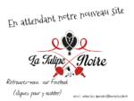 La Tulipe Noire , troupe , escrime , artistique , spectacles , cape et d'epee , avignon , cou