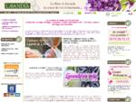 Lavandia - Lavande de Provence en fleur, bouquet et sachet lavande en vrac et cadeaux
