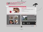 LEAL - Lega Antivivisezione - Sede di Piacenza | Gattile Comunale di Piacenza